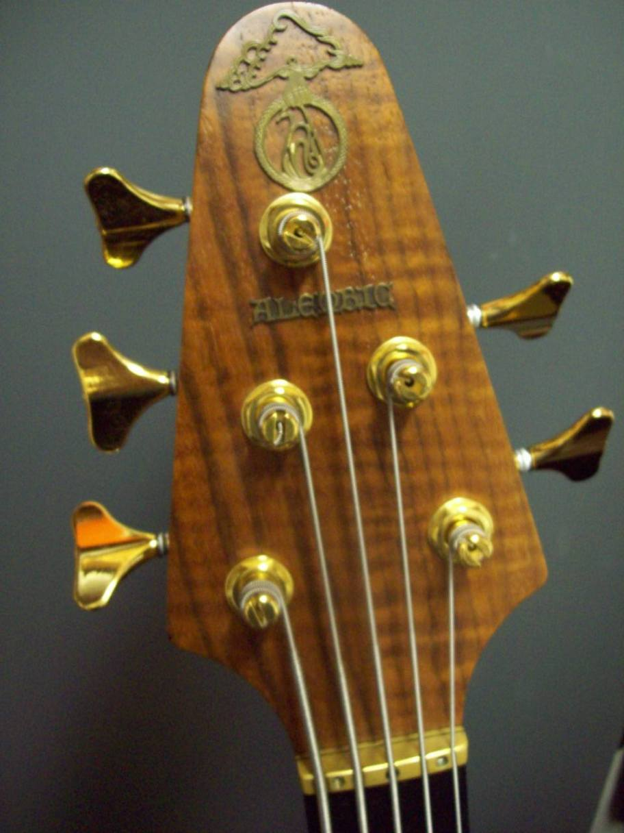 Epic 5 Headstock Veneer