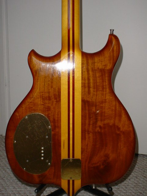 back of bass