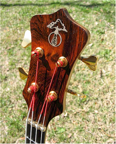 Headstock Shot. . . .Outdoors
