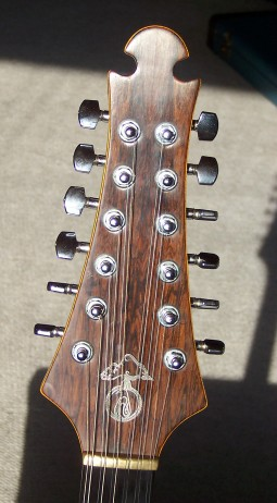 "'77 Series I 12 String - ""Big Irv"""