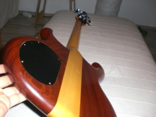 Persuader 5-String Back