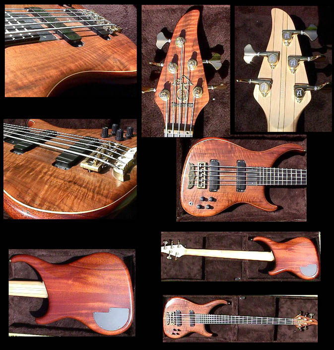 Alembic Orion 5