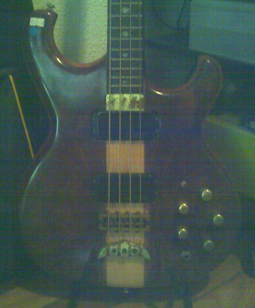 Alembic bass 1