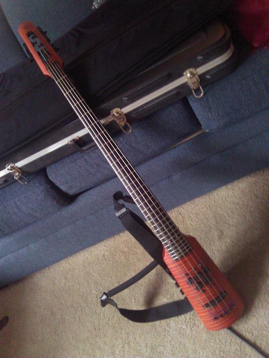 NS Omni 5 String
