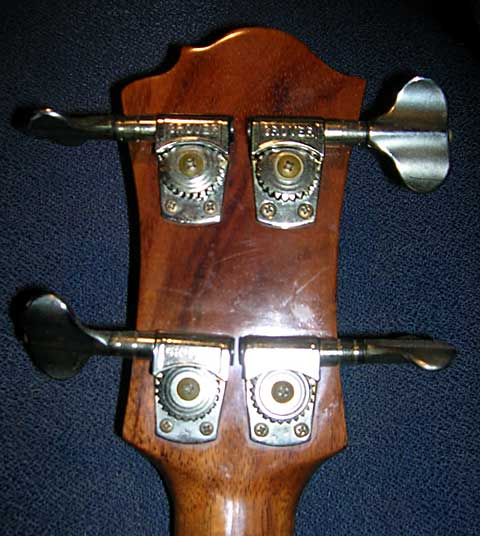 Blank Headstock rear A