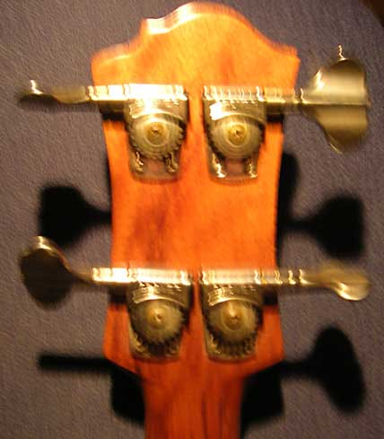 Blank Headstock rear B