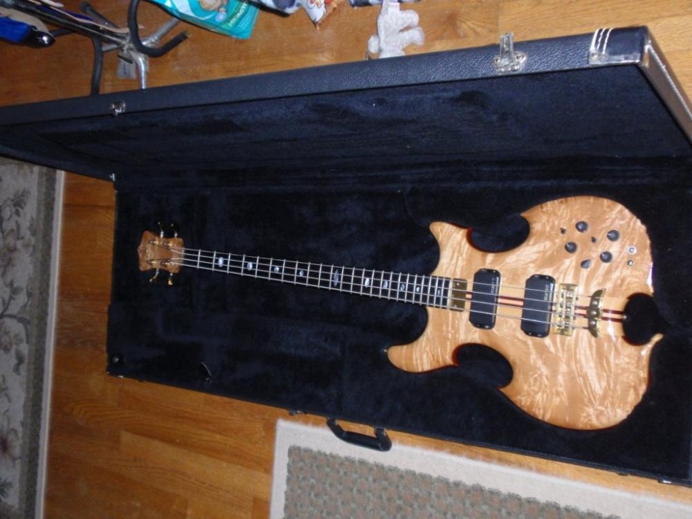 Bass case