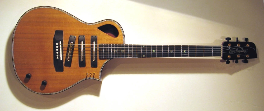 acoustic-electric hybrid