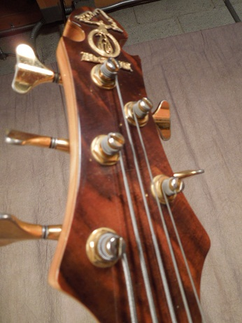 Scorpion 5 string Bass Headstock Front