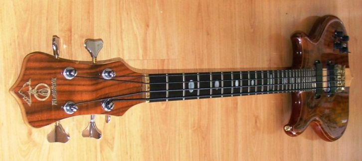 pic of alembic mark king