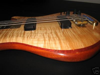 Rogue flame maple