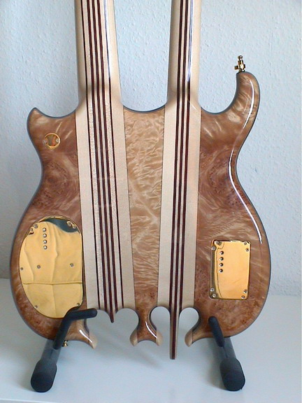 back side of doubleneck bass