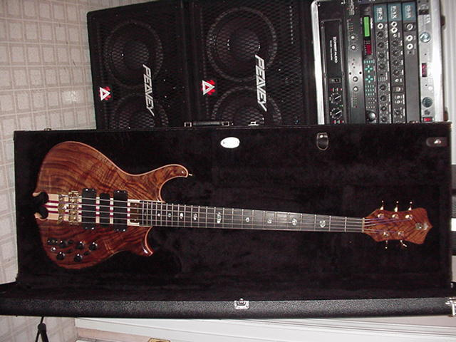 SERIES II 5 STRING & RIG