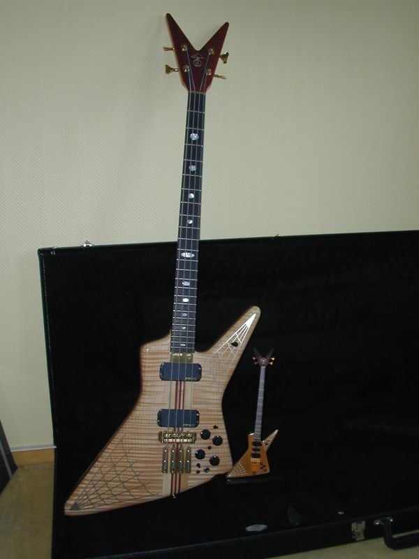 My Spyder 4string.....