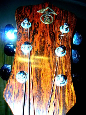 Headstock and Alembic logo