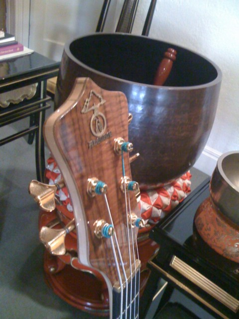 alembic headstock and bells