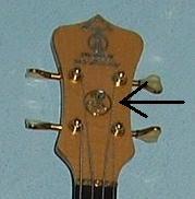 Eugen's Headstock