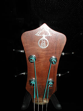 Brown Bass headstock