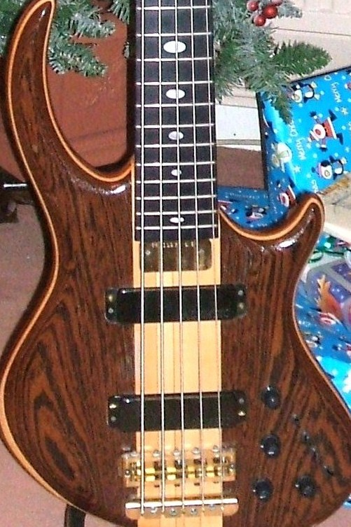 Alembic Rogue