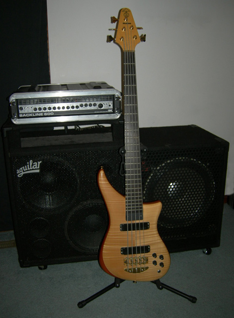 1997 Alembic Epic 5 string