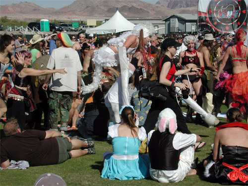 Vegoose crowd