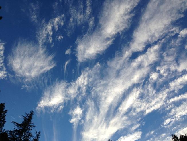 farewell sky